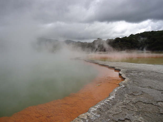 Photo taken in one of the geothermal parks in Rotorua by Brittany Korbel, Lasell College who studied abroad in New Zealand.