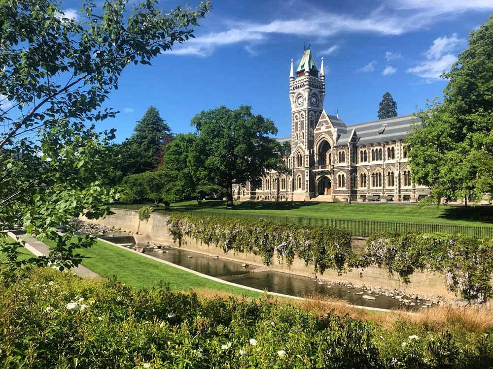 Where to Study Abroad in New Zealand: Dunedin or Auckland | TEAN Abroad