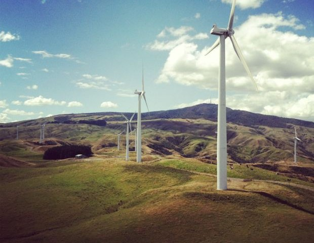 Windmill Farm Palmerston North