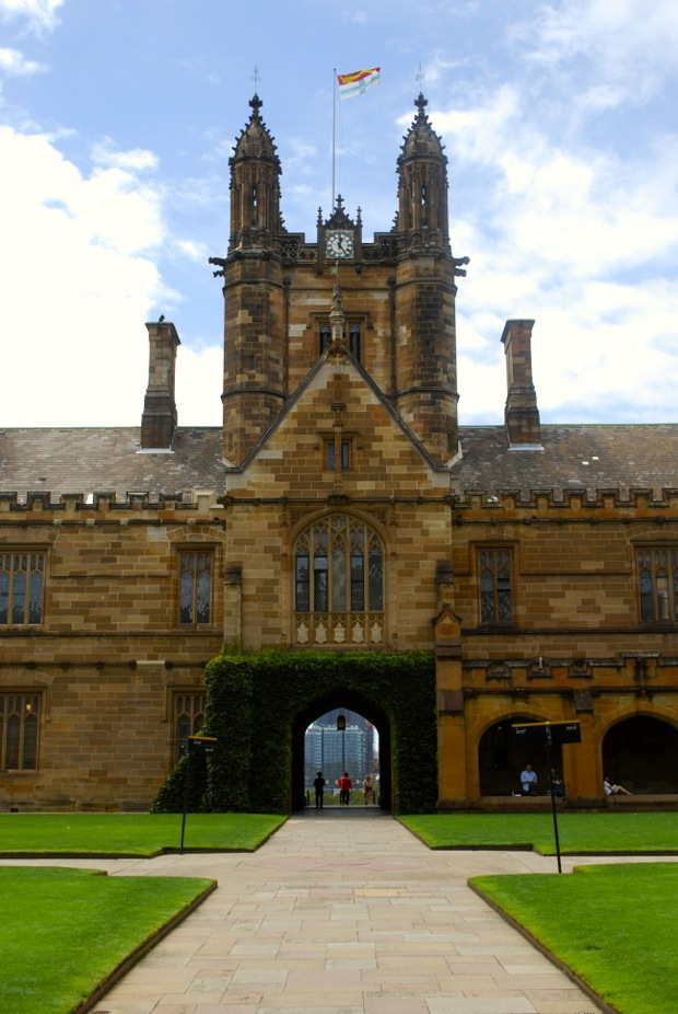university of sydney preparation course composition writing template