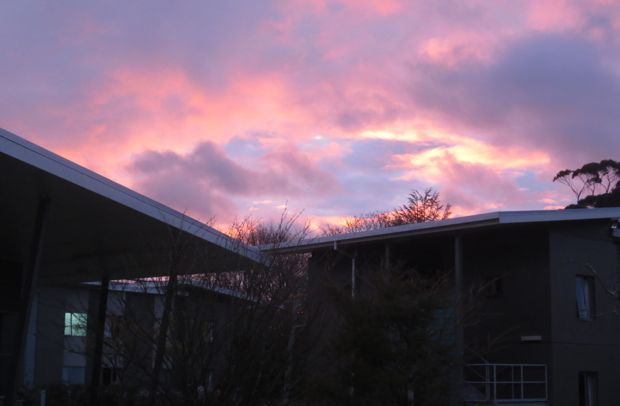 Sunset over Palmy