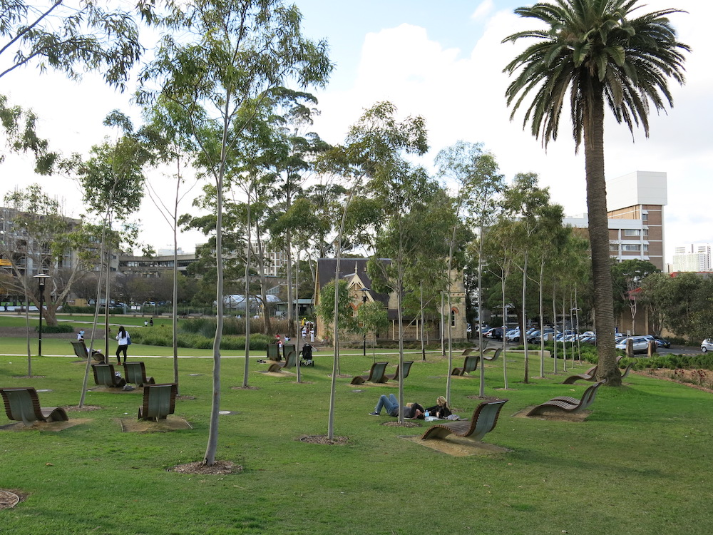 Students relaxing on the University of Sydney campus
