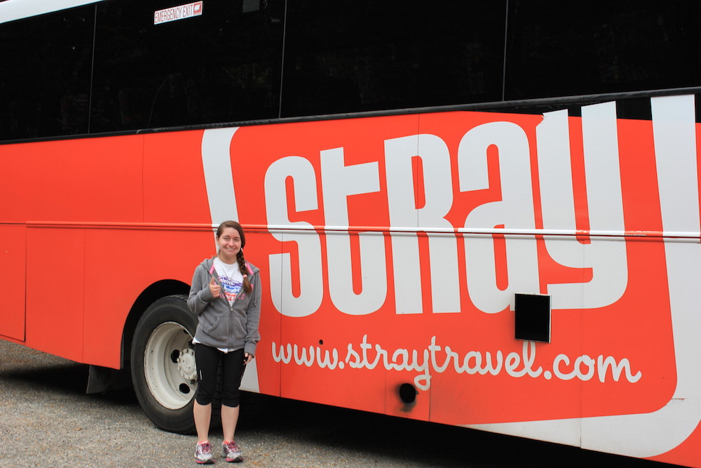 Photo of me with the Stray bus