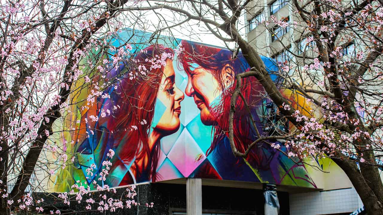 A large display of street art on the side of a building in Dunedin, New Zealand