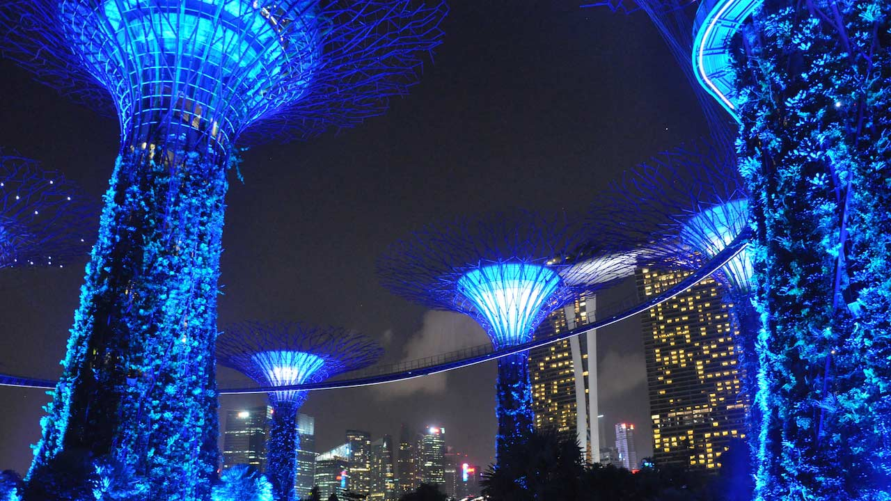 Blue illuminated Supertrees at Gardens by the Bay at night in Singapore