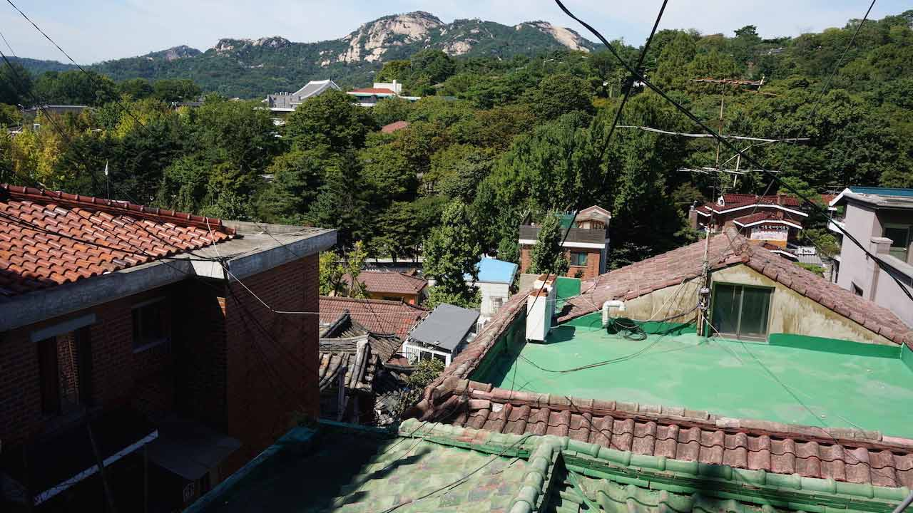 An assortment of different coloured roofs in front of trees in Korea