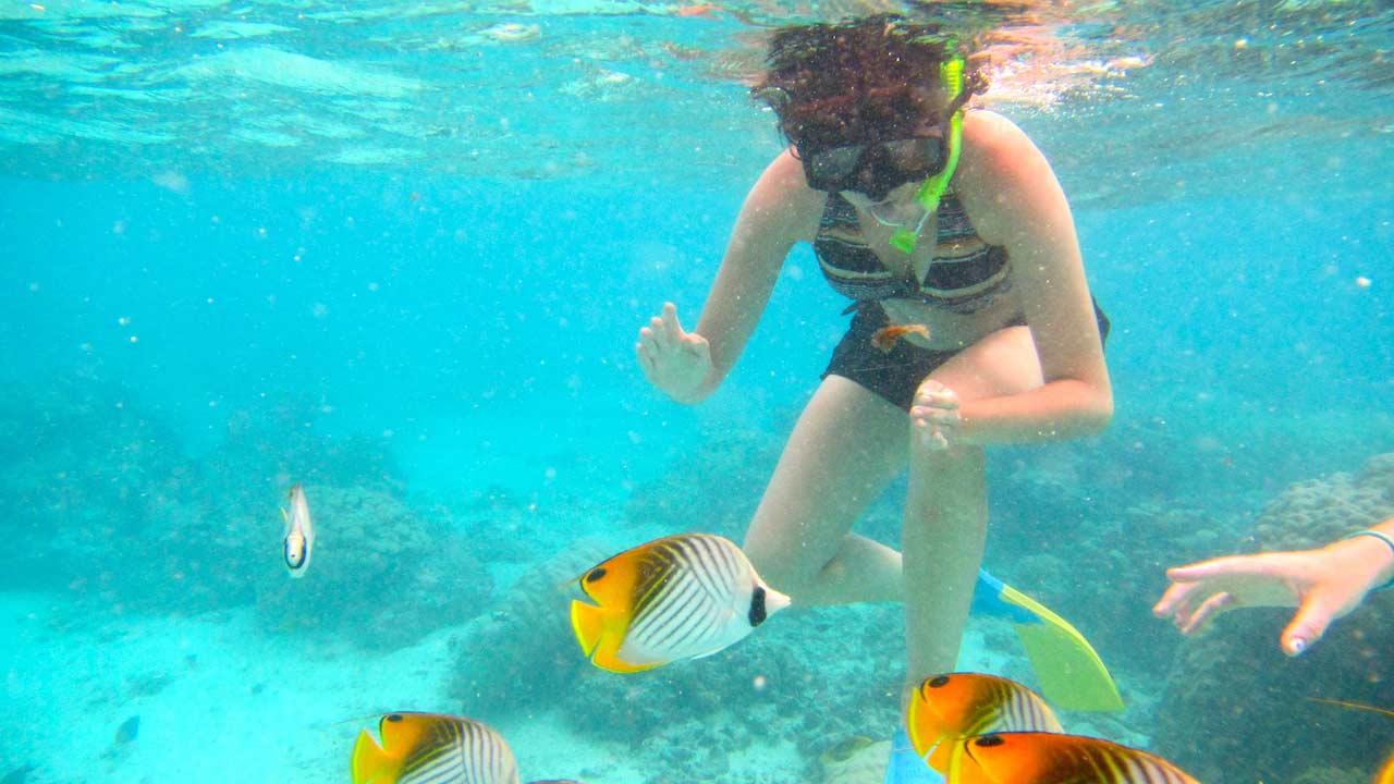 A women snorkelling amongst colorful fish