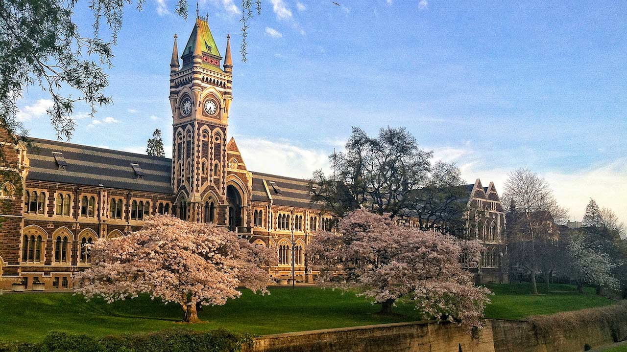 An ornate building surrounded by flowered trees on University of Otago's campus