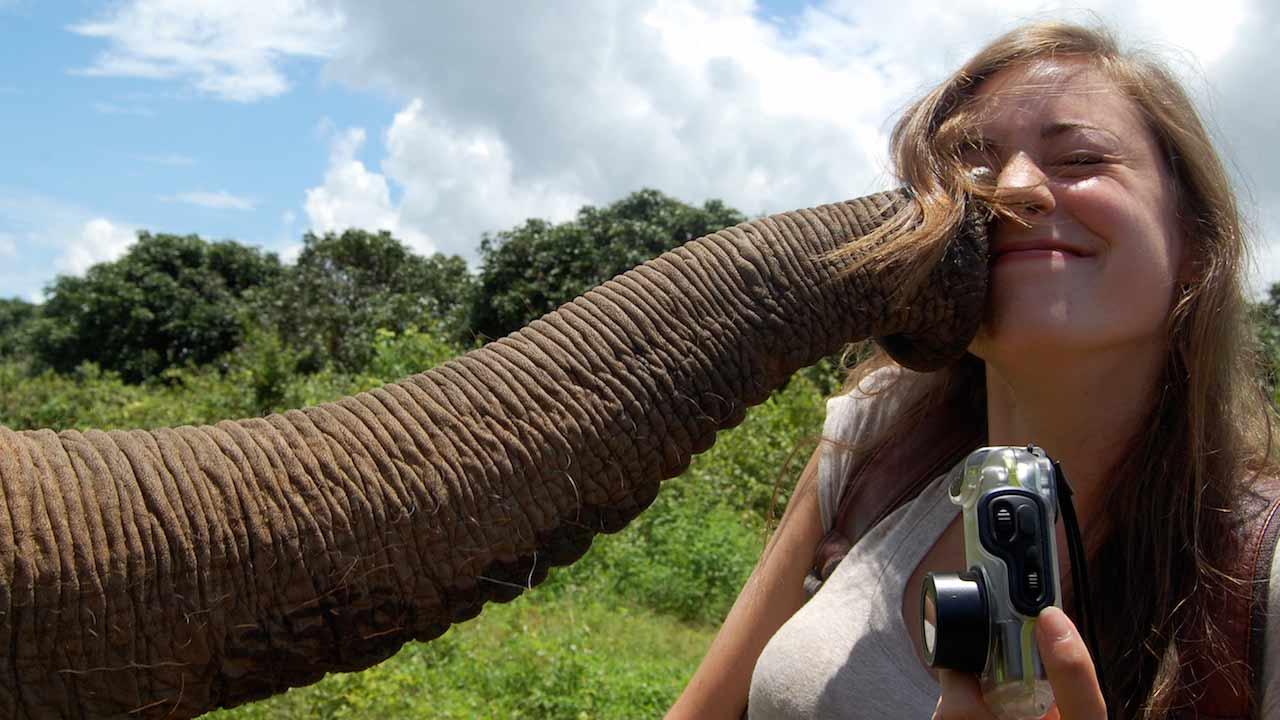 An elephant trunk kisses a female student on the cheek