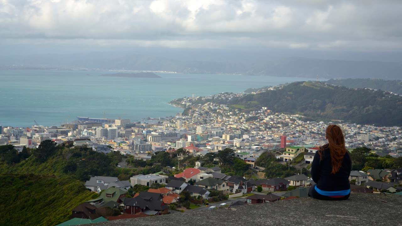 A woman sits on a hill looking out over Wellington, New Zealand