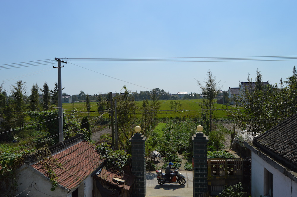 The view from my friend's grandparent's house over the fields of their village.