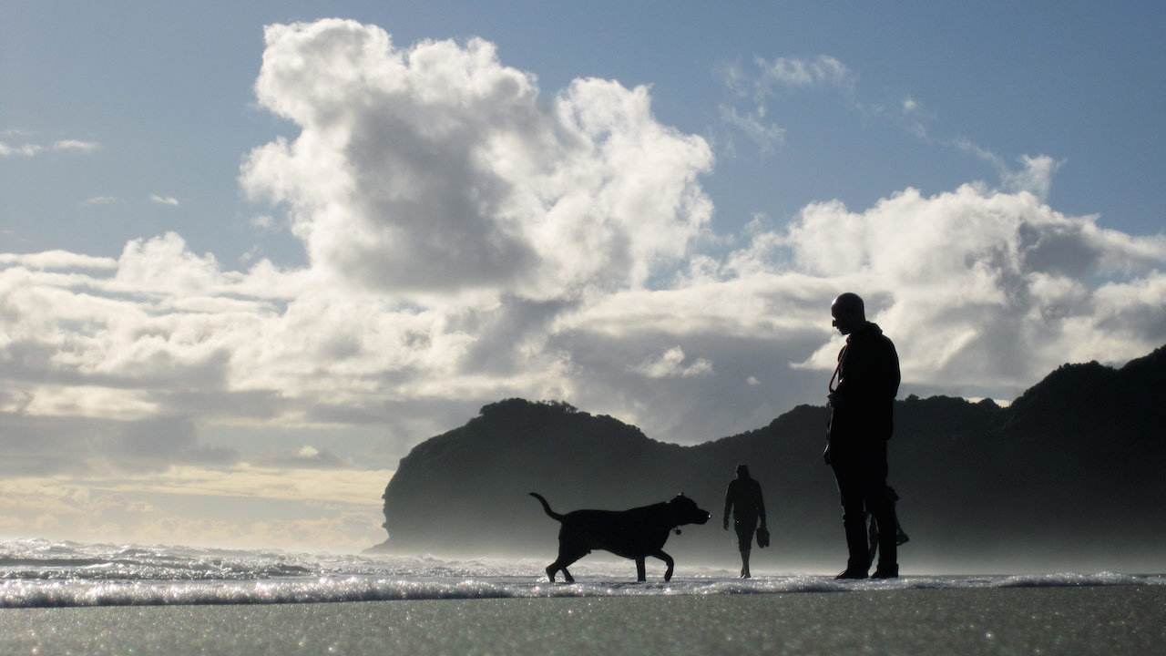 Silhouette of a man and a dog on a misty beach
