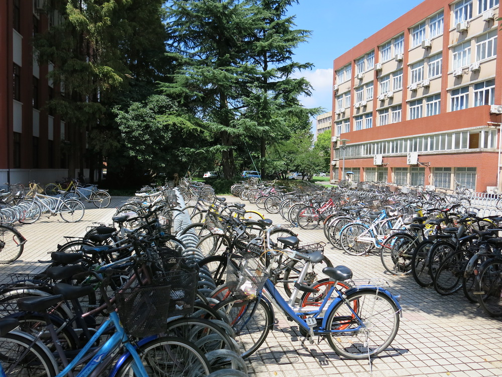 Bikes parked on-campus at Fudan University