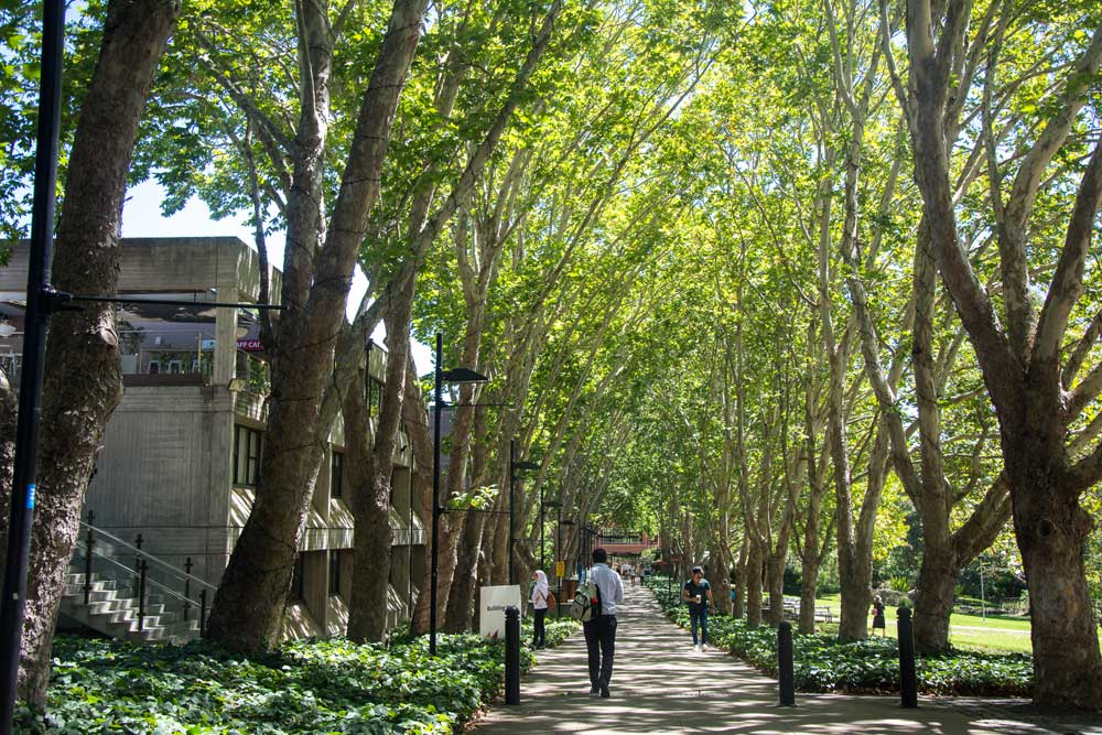 Study abroad tuition discount for Macquarie University, Sydney