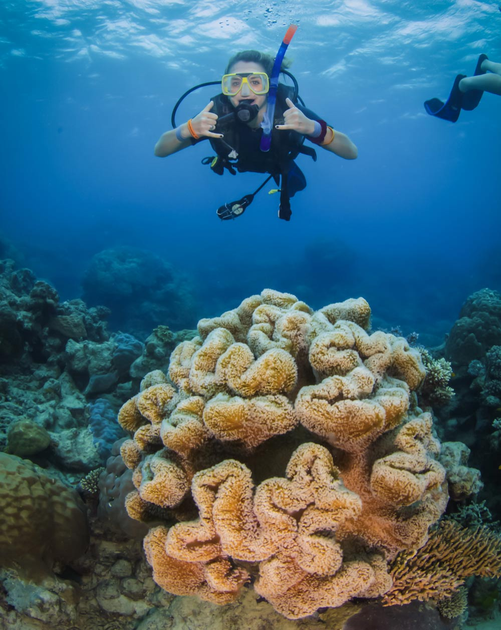 A woman enjoys diving in the Great Barrier Reef amongst the coral
