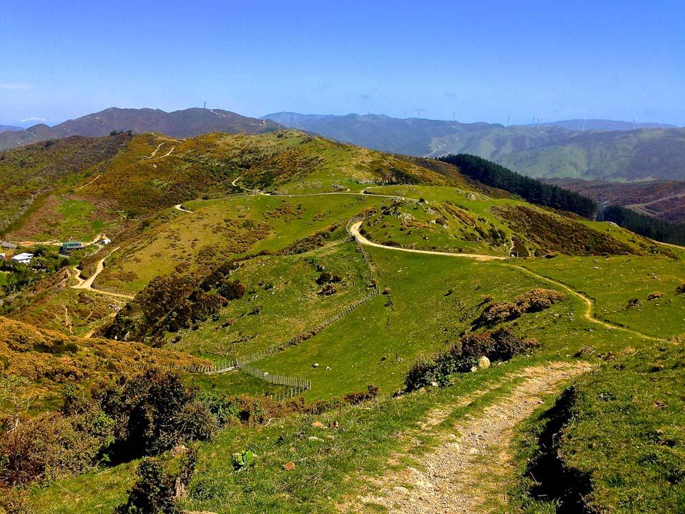 Skyline hike in Wellington New Zealand