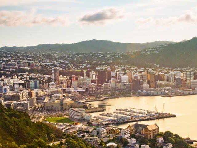Wellington harbour view