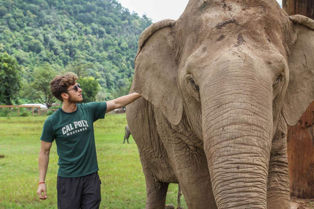 Elephant Nature Park with Cal Poly student