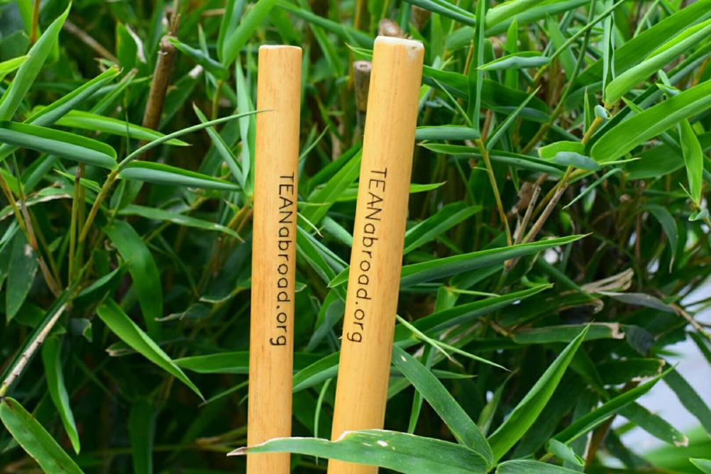 TEAN's bamboo straws