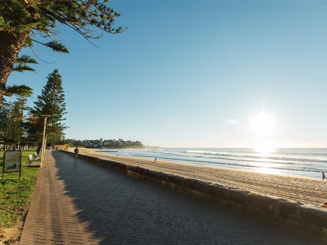 Manly beach in the morning