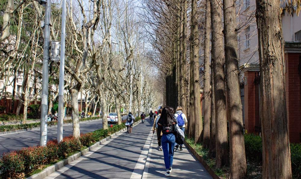 Walking on Fudan University campus